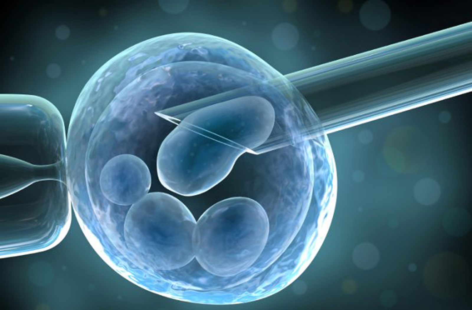 Stem Cell Therapy - Summit Regenerative Medicine